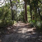 Walking along Yanina Walk (234272)