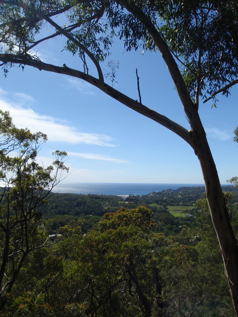 View from Colin Watters Lookout (234452)