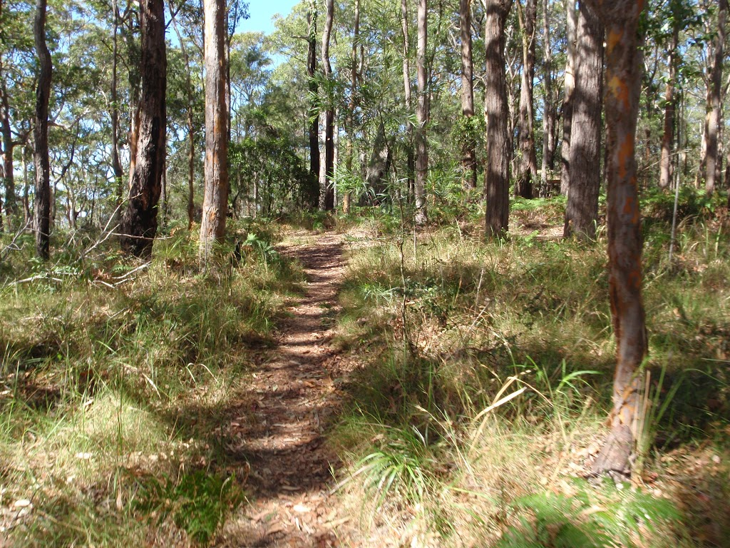 Track near Colin Watters Lookout (234527)