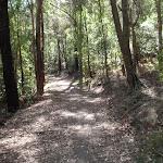 Blue Hill trail (234821)