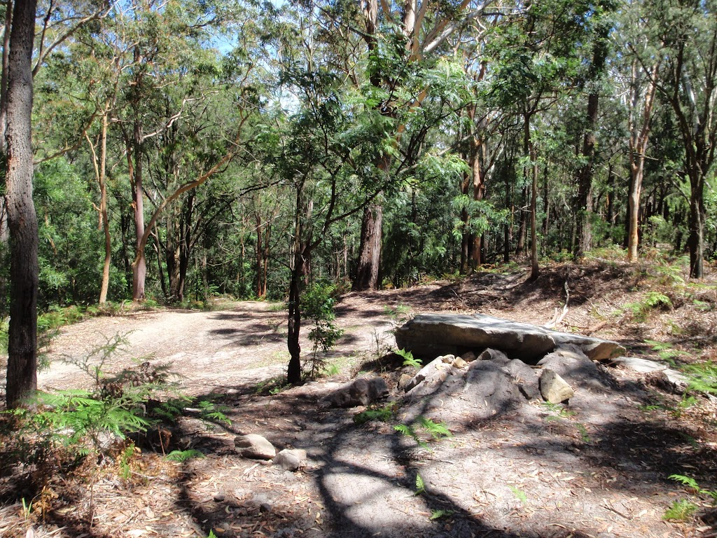 Small clearing were Sandringham track meets the management trail