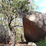 Large boulders along the track