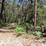 Sid Pulsford Walking Trail (235697)