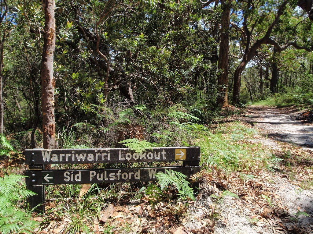 Int of Sid Pulsford Walking and Warriwarri Lookout trails (235700)