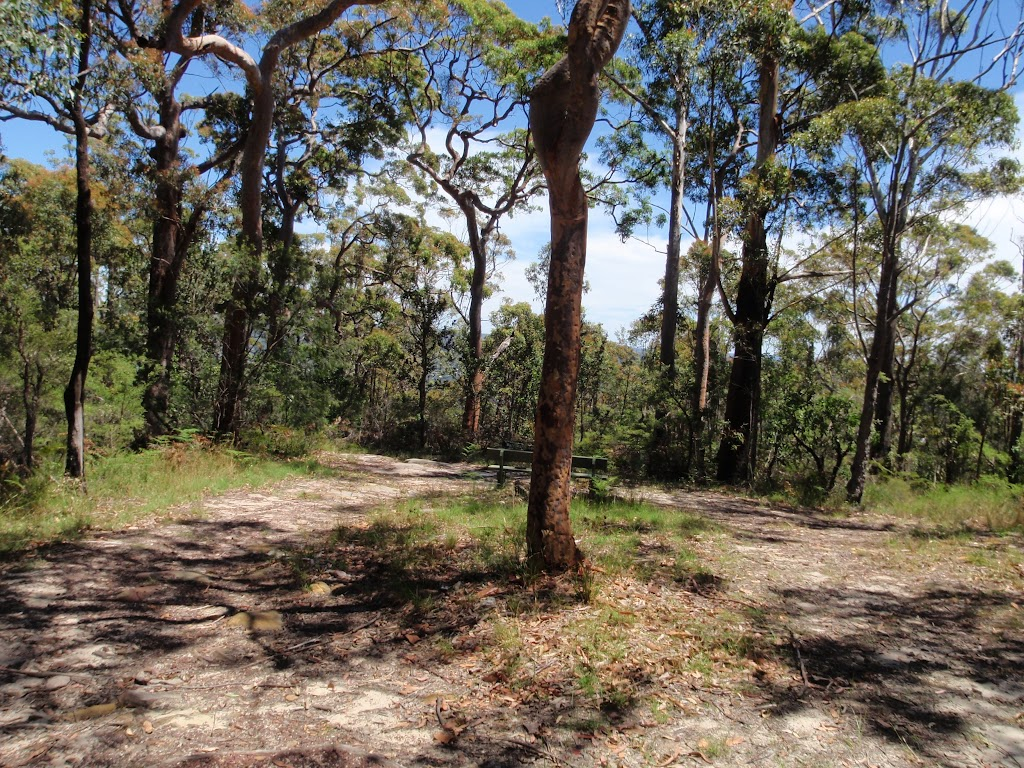 Warriwarri Lookout trail (235760)