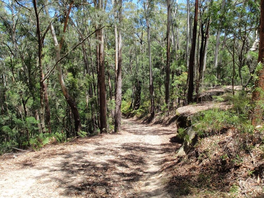 Walking along the wide trail