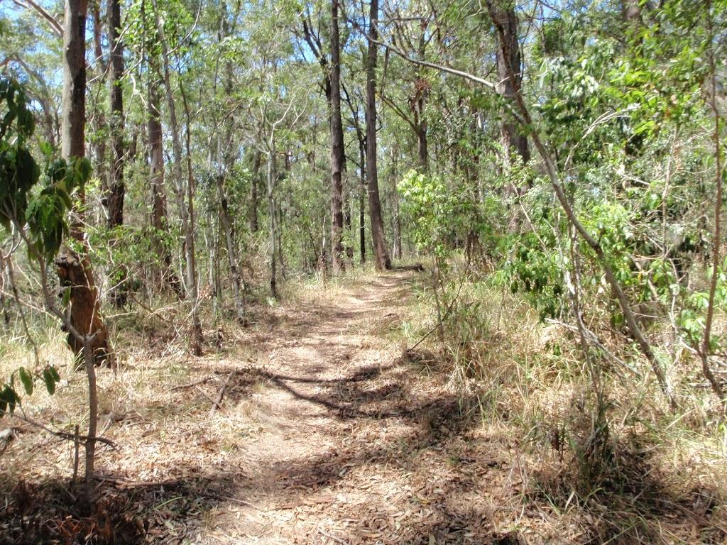 Sid Pulsford Walking track