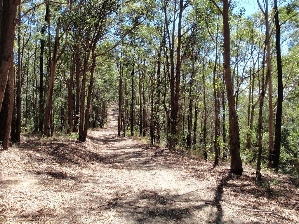 Sid Pulsford trail