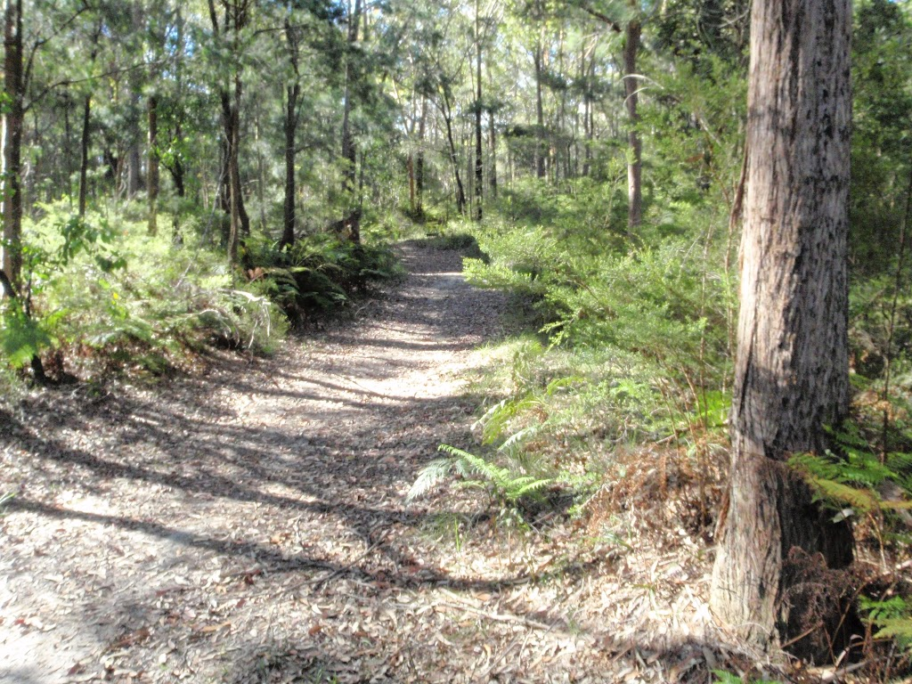 Walking along the trail