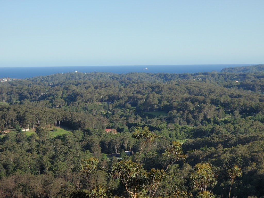 View from the lookout (239336)