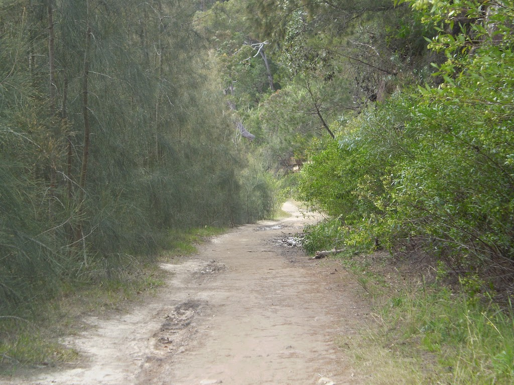 The servicetrail north of Davidson Reserve