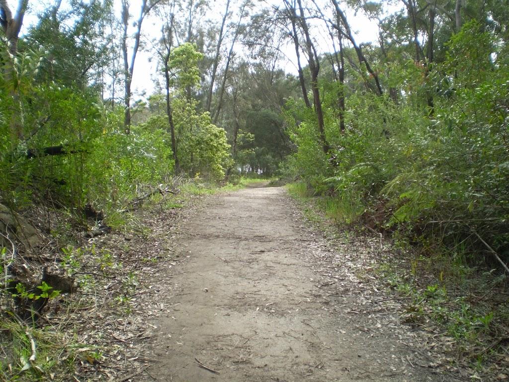 Heading through the bush