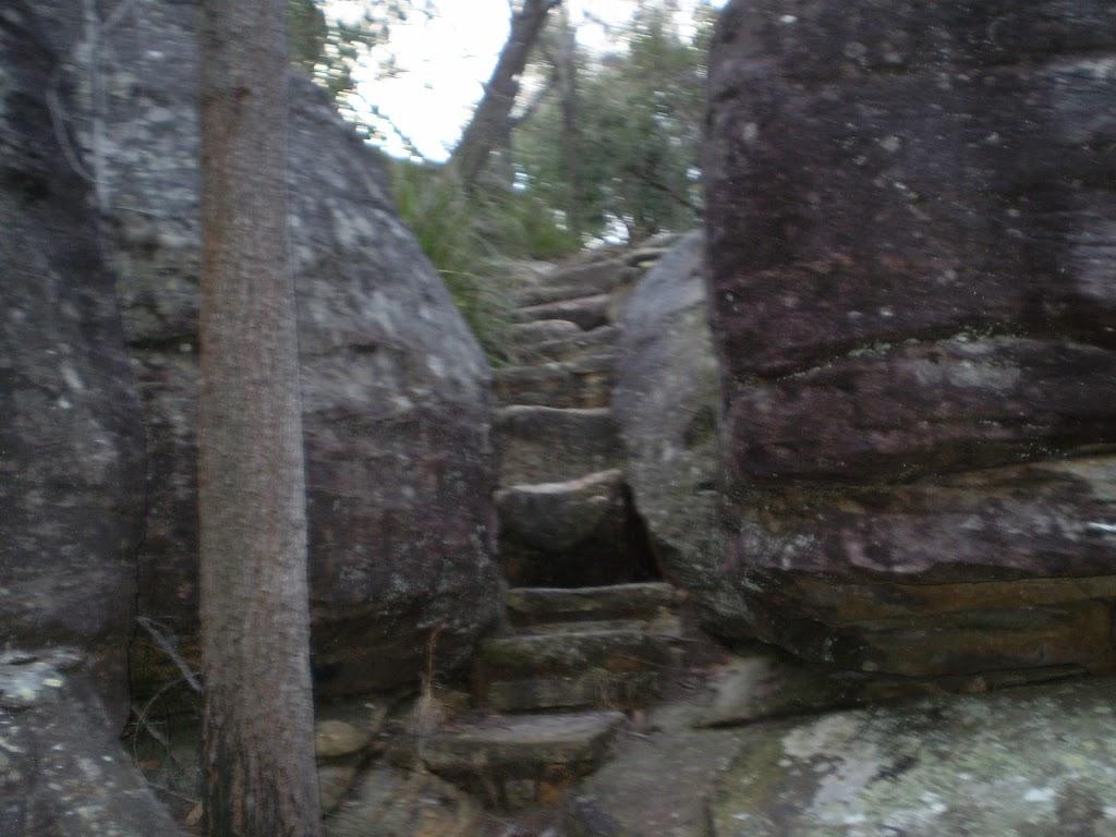 Steps on Bungaroo track