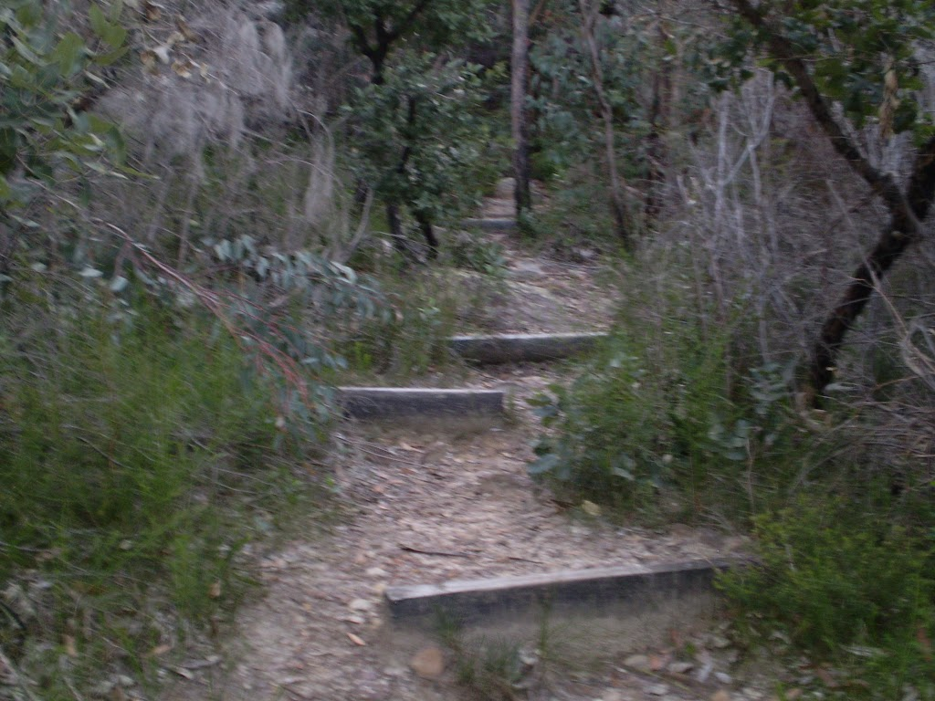 The Bungaroo Track