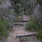The Bungaroo Track