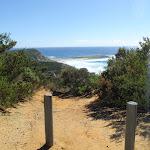 Timber Beach Lookout
