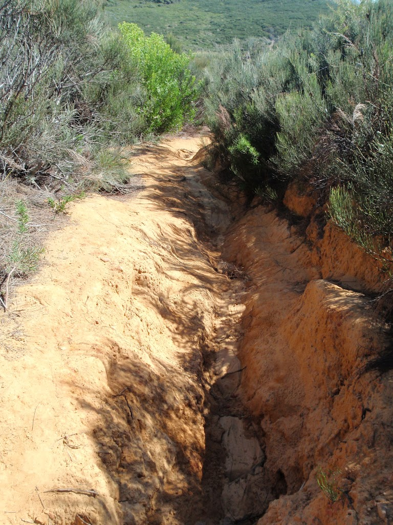 Eroded Track