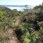 Track near Timber Beach