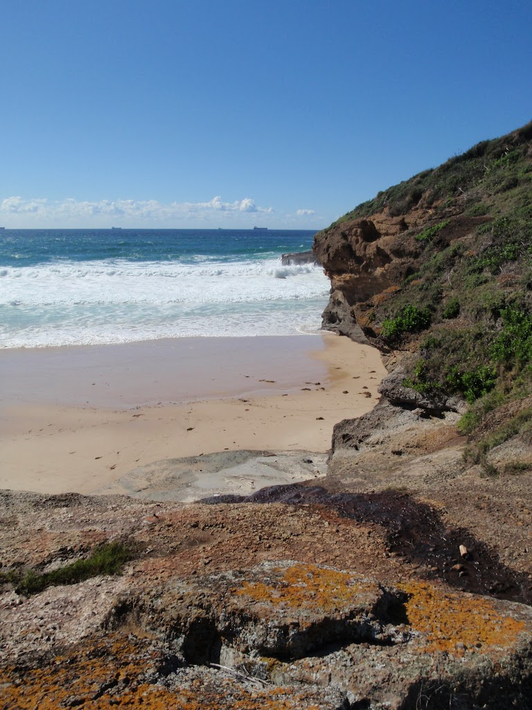 Timber Beach (247270)