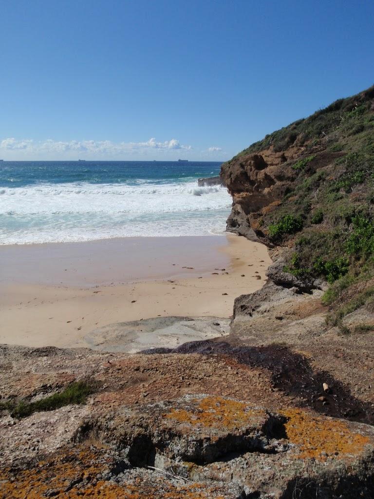 Timber Beach