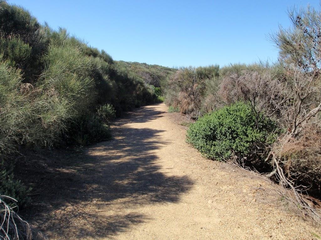 Walking through the heath towards Snapper Point
