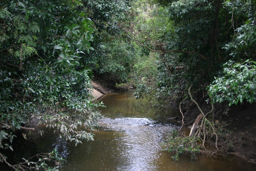 Lane Cove River at Browns Water Hole