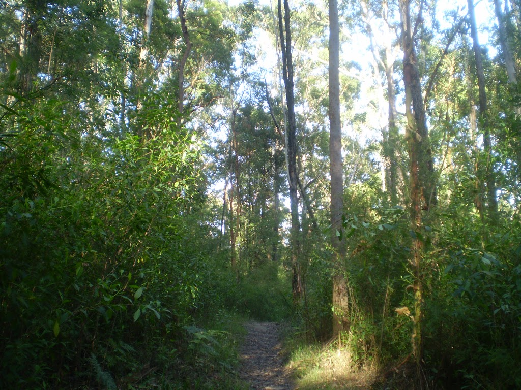 Northern End of Terrys creek track