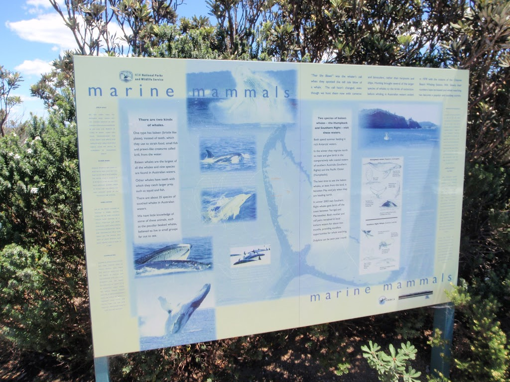 Marine Mammals sign