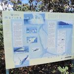 Marine Mammals sign (249145)