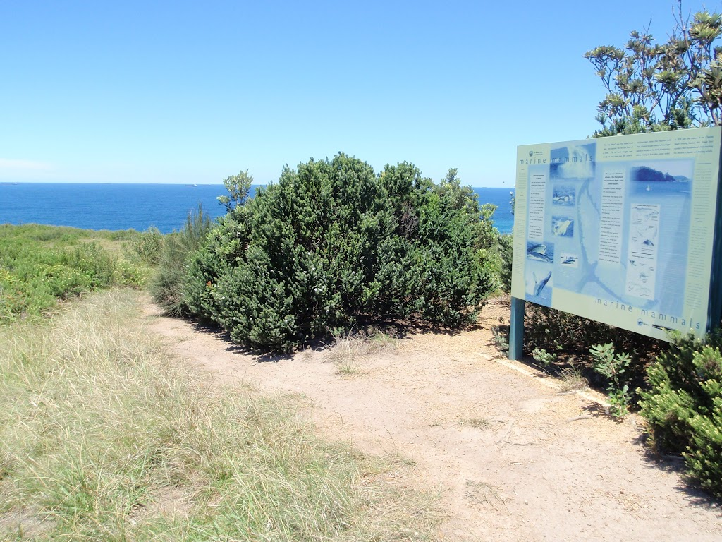 Sign at whale watching area (249175)