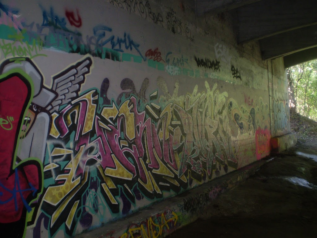 Graffiti under Epping Rd Bridge