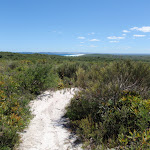 A glimpse of Birdie Beach (250063)