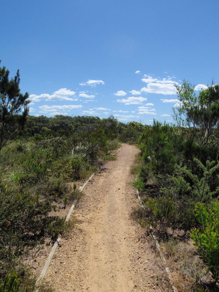 The Geebung Track