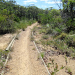 Timber edging on the Geebung Track (250255)