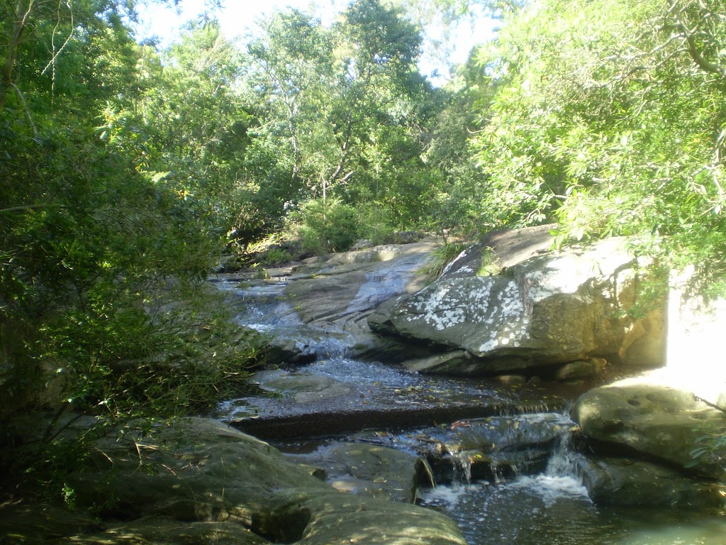 Terry's Creek (25084)