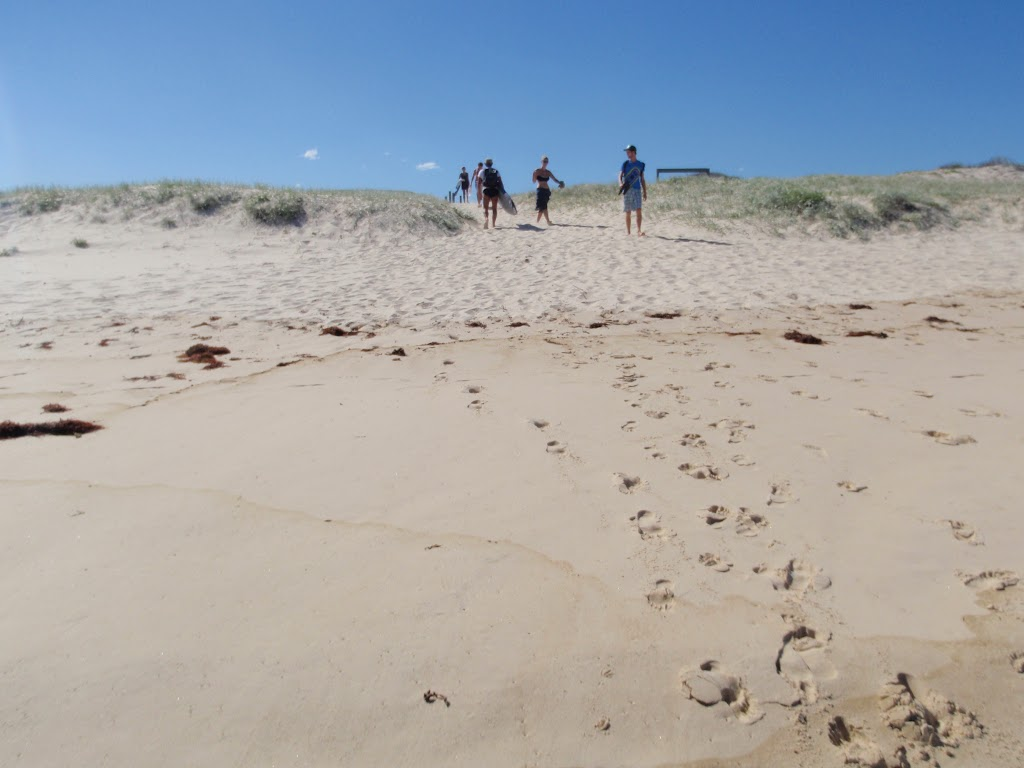 Walking back over the dune to access track