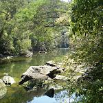 Cockle Creek (25163)
