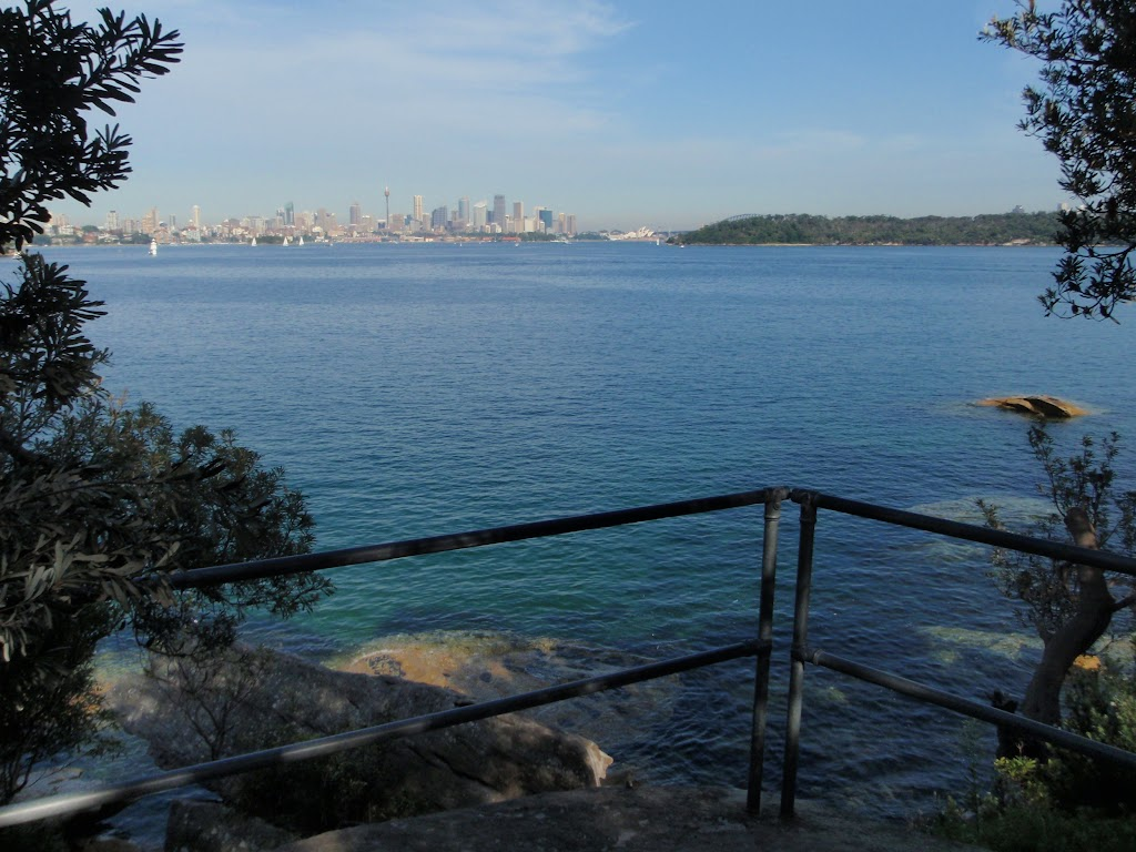 Steele Point Lookout
