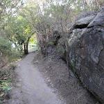 Walking beside rock wall (253037)