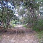 Bobbin Head Track