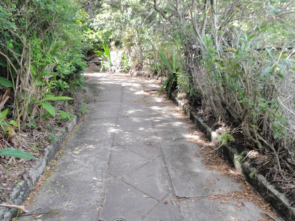 Old road south of Hermit Point (254297)