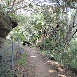 Hermitage Foreshore Walk (254348)