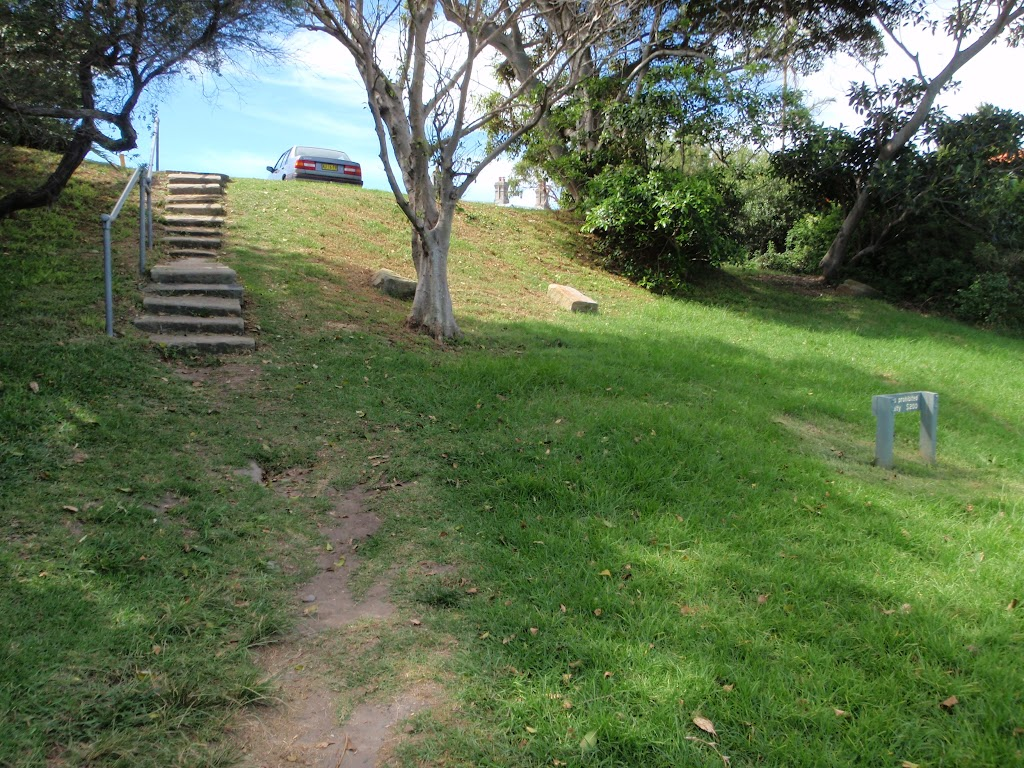 Steps on the southern side of Green (Laings) Point (256172)