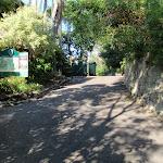 Near Mosman Rowers (258110)