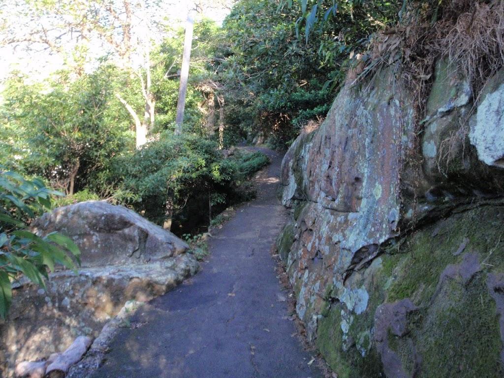 Walking track near Mosman