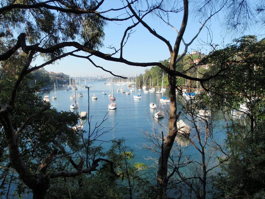 Boats on Mosmans Bay
