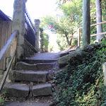 Old steps around Mosman (258269)