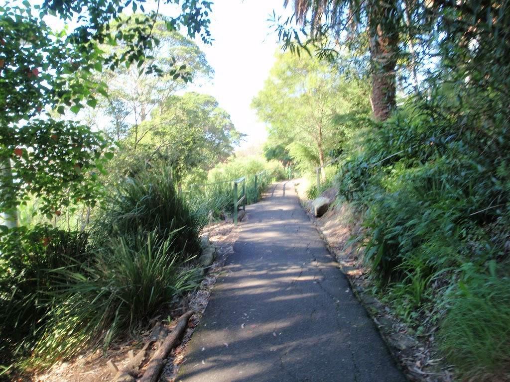 footpath leading through Cremorne Reserve
