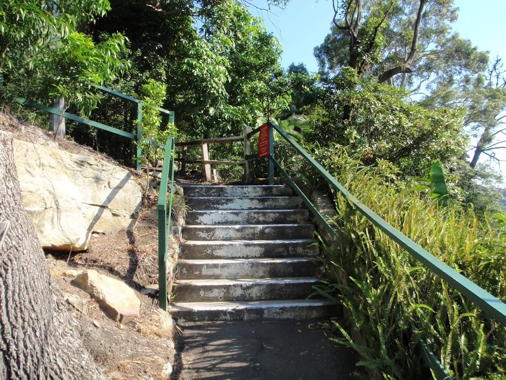 Steps on track in Cremorne Reserve