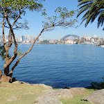Sydney Harbour from Cremorne Reserve (259496)
